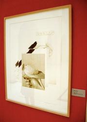 Pájaros, 1985. Manuel Boix.